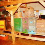 Museums-Bienenstand